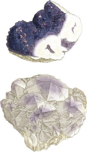 Coloured or Amethystine Quartz. Amethyst