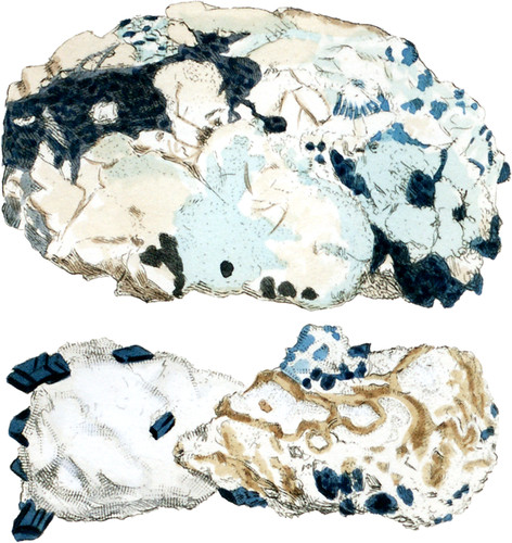 Carbonate of Magnesia